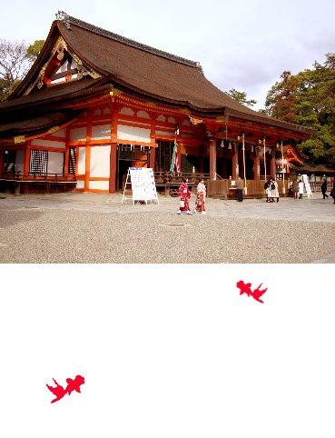 4-3八板神社05.jpg