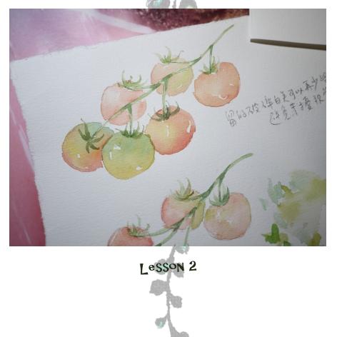 L2番茄-06