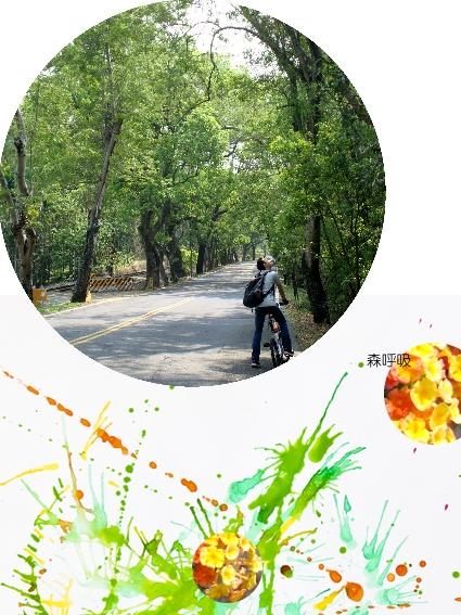 bike-01集集02.jpg