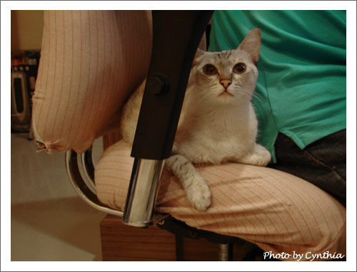 Sora擠椅子