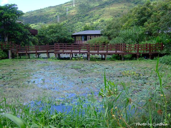 台灣版蓮池
