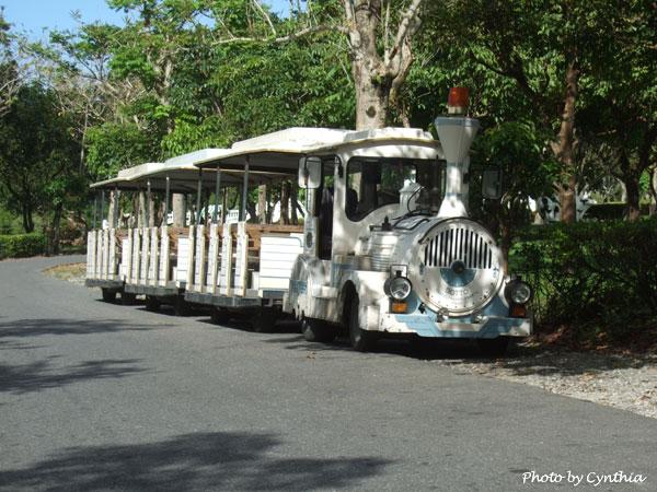 DM上的白色遊園車