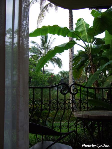 理想大地-房間窗外的綠色景物