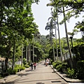 大板根-入園步道