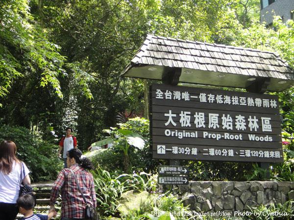 大板根-原始森林區入口