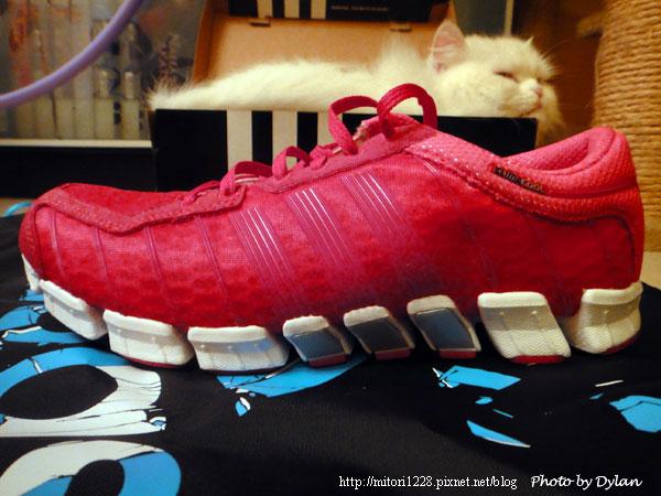 買球鞋2011-2