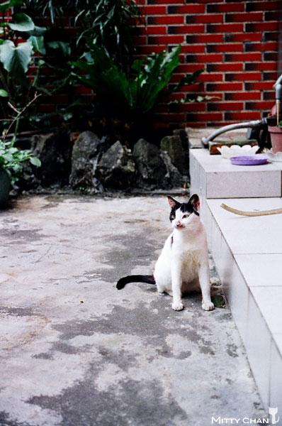 FM2-cat-019-v4.jpg