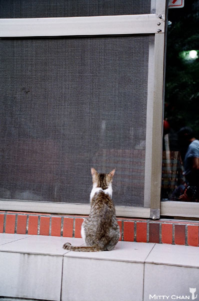 FM2-cat-020-v4.jpg
