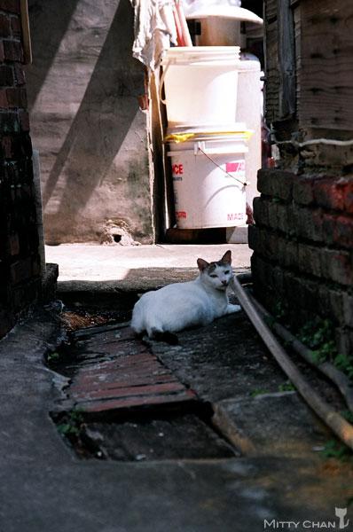 FM2-cat-024-x4.jpg