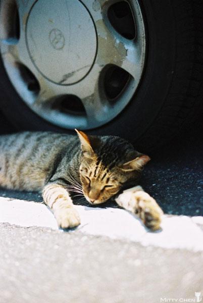 FM2-cat-047-v200.jpg