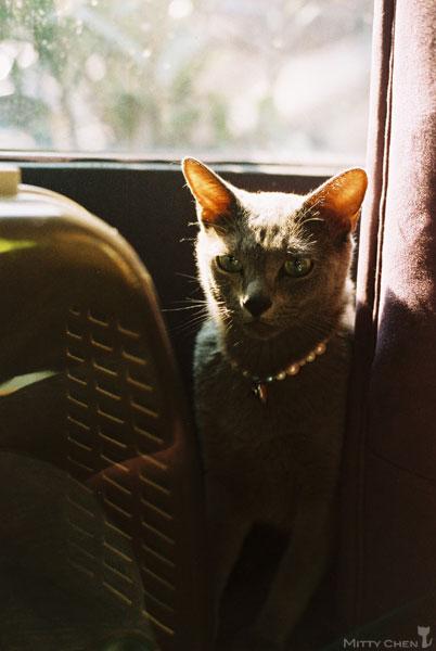 FM2-cat-051-v200.jpg