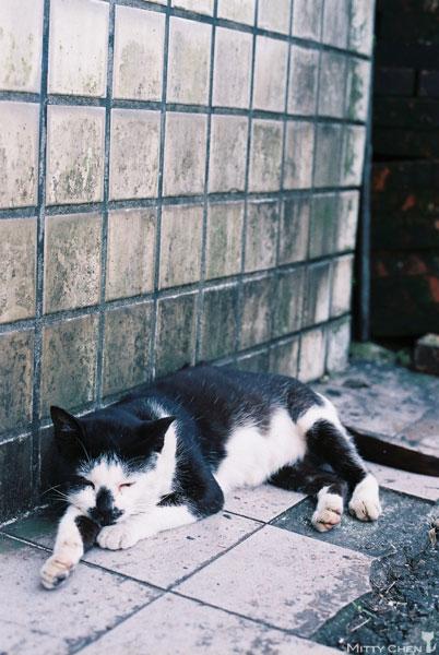 FM2-cat-059-x400.jpg