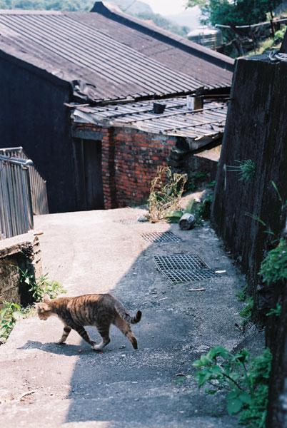 FM2-cat-060-x400.jpg