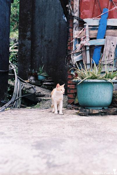 FM2-cat-076-x400.jpg
