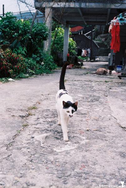 FM2-cat-078-x400.jpg