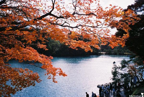 日本五色沼-c.jpg