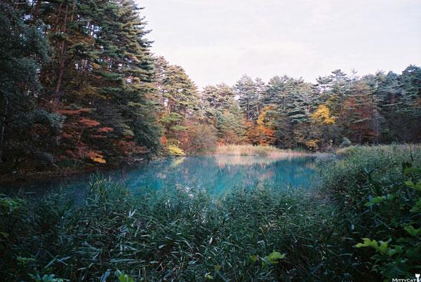 日本五色沼之青沼-c.jpg