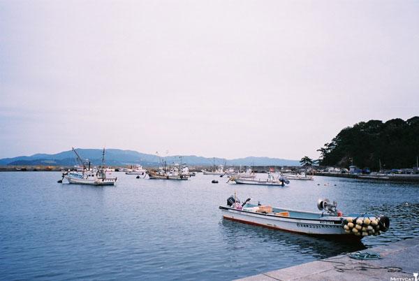 日本田代島2-c.jpg