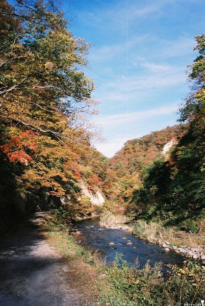 日本鳴子峽4-c.jpg