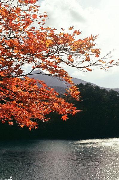 日本五色沼.jpg
