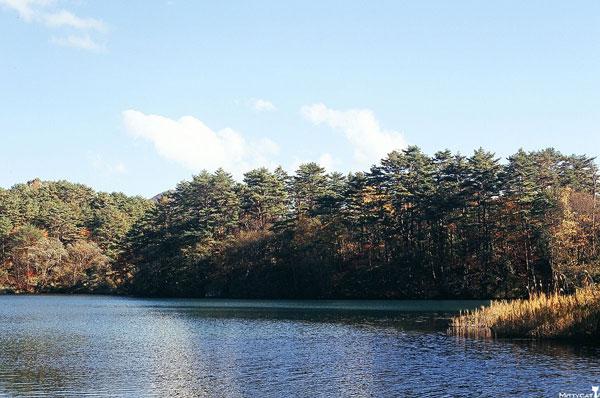 日本五色沼2.jpg