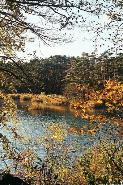 日本五色沼5.jpg