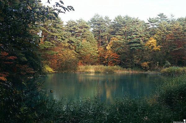 日本五色沼之青沼.jpg