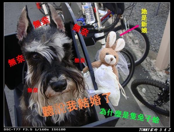 DSC00057_nEO_IMG.jpg