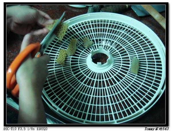 nEO_IMG_DSC03232.jpg