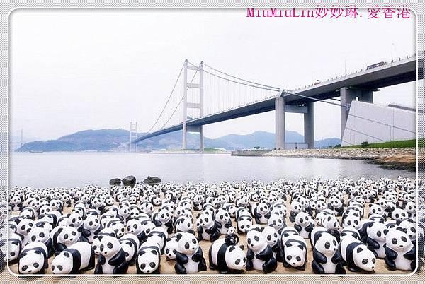Panda_mawan1_1_副本.jpg