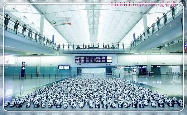 Panda_ariport5_1_副本.jpg