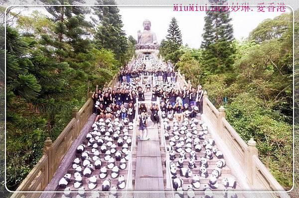 Panda_buda_1_1_副本.jpg