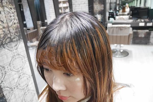 P1580055_副本.jpg