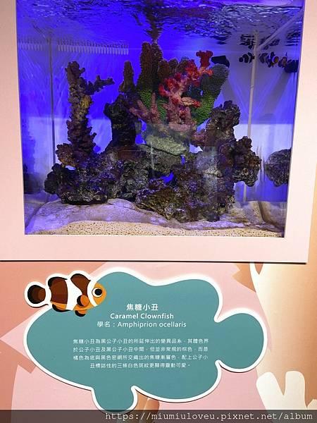 IMG_3288_副本.jpg