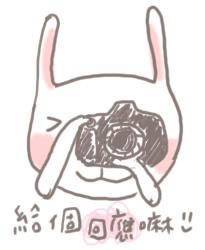 兔子給個回應.jpg