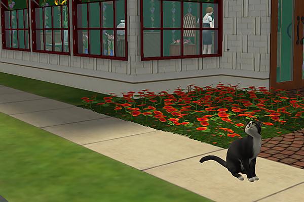 Sims2ep9 2013-04-07 09-08-43-03