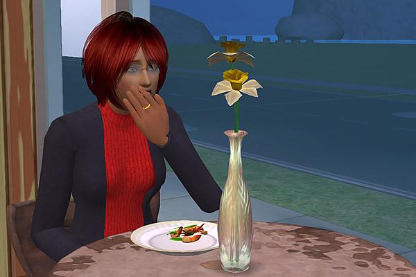 Sims2ep9 2013-04-19 14-23-59-76