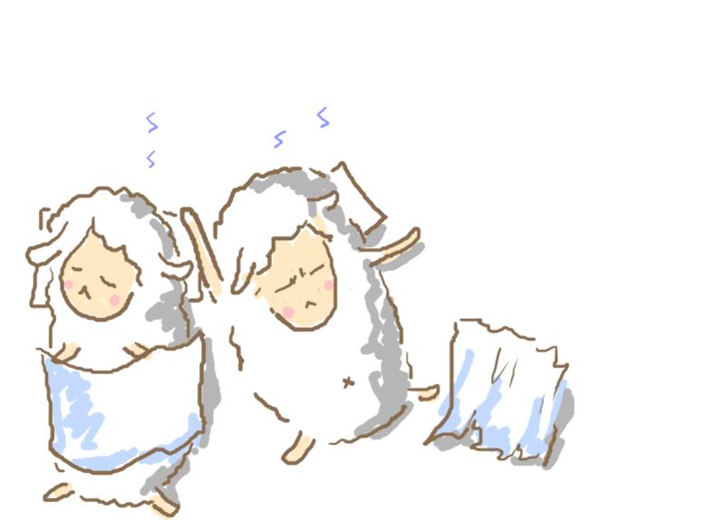 羊羊睡2.jpg