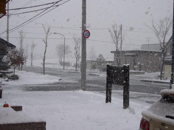 突然的大雪,雪的厚度又加深了~~白茫茫一片