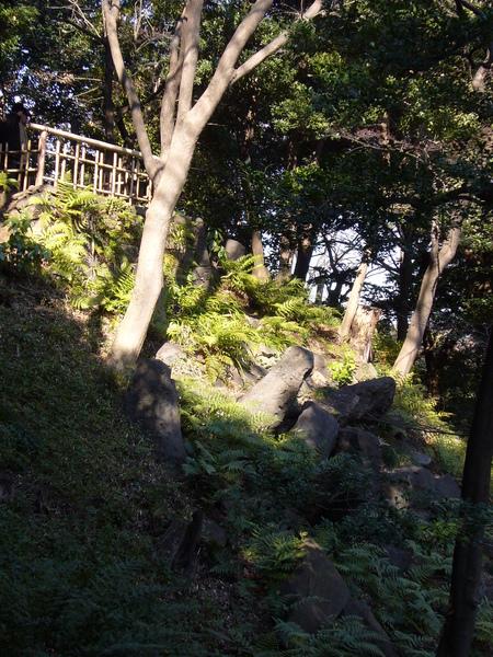 這些石頭的擺設也是仿京都某點而設.JPG