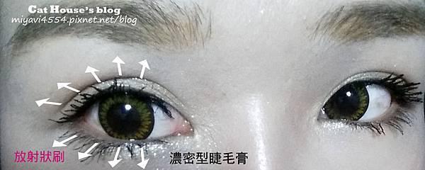 刷睫毛的方式.jpg