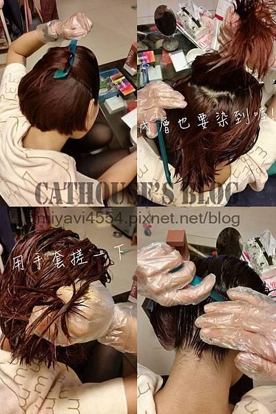 染髮過程.jpg