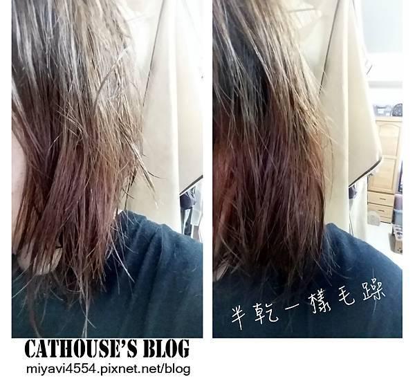 髮質超級糟糕.jpg