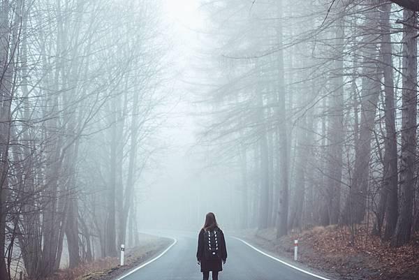 fog-1208283_1920.jpg