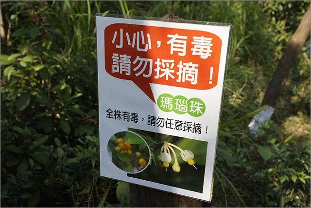 高雄鳥松濕地公園_5