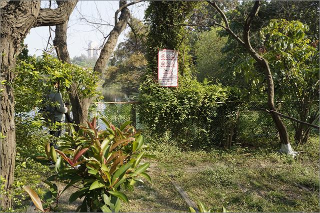 高雄鳥松濕地公園_6