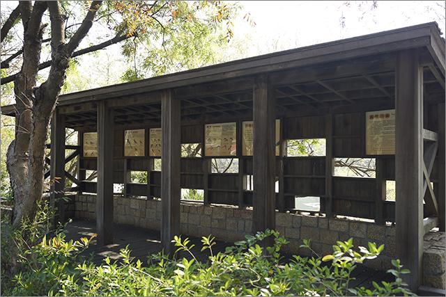 高雄鳥松濕地公園_18