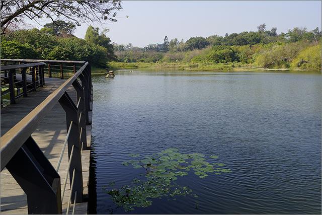 高雄鳥松濕地公園_28