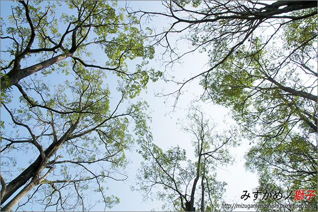 臺南烏山頭水庫_30