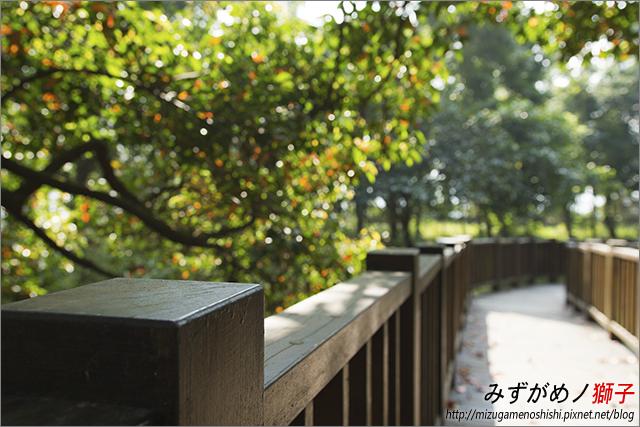 高雄新威森林公園_1